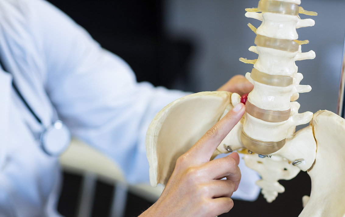 physiotherapist-holding-spine-model_edit