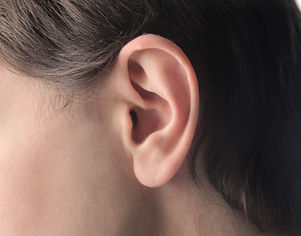 closeup-ear.jpg