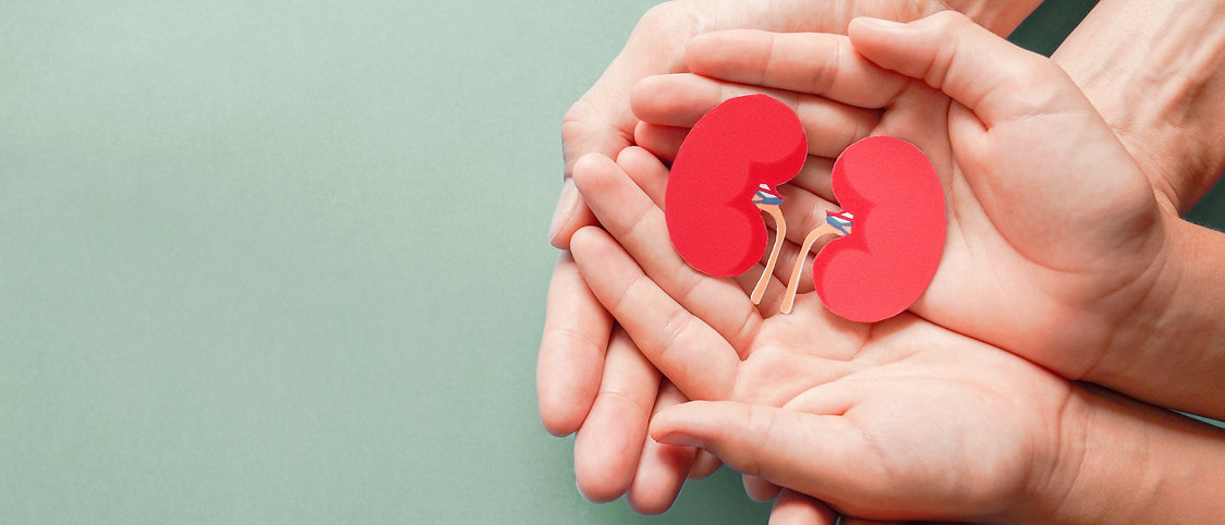 adult-child-holding-kidney-shaped-paper-