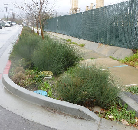 LID Stormwater Treatment BMP
