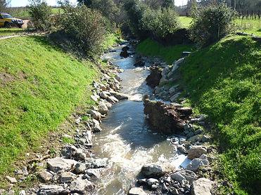 Huichica Creek Restoration