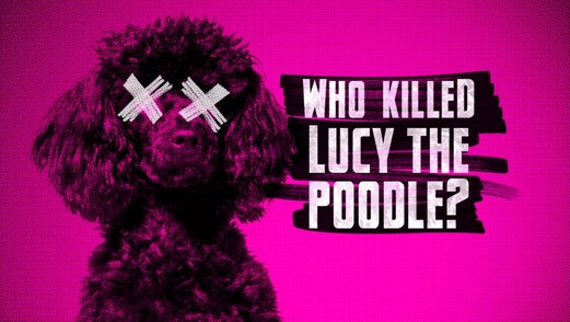 WHO KILLED LUCY THE POODLE?