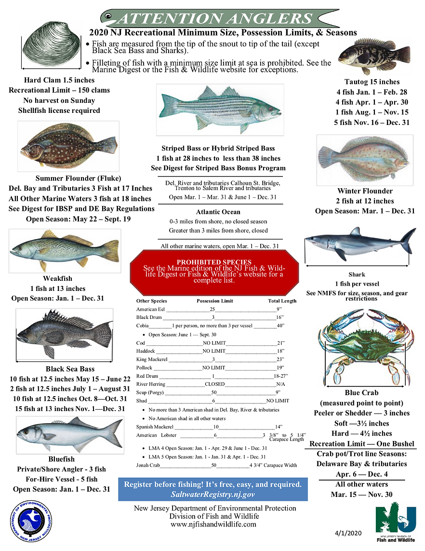 fishing chart.png