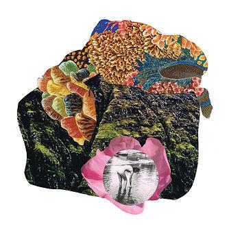 collage-mos.jpg
