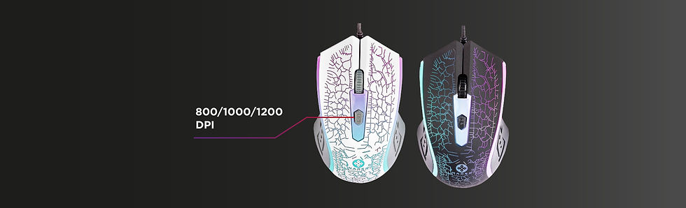 Seccion mouses-10.jpg