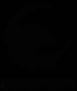 Logo Raven_Mesa de trabajo 1.png