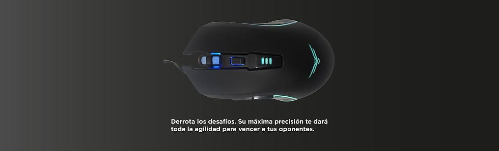 Seccion mouses-02.jpg