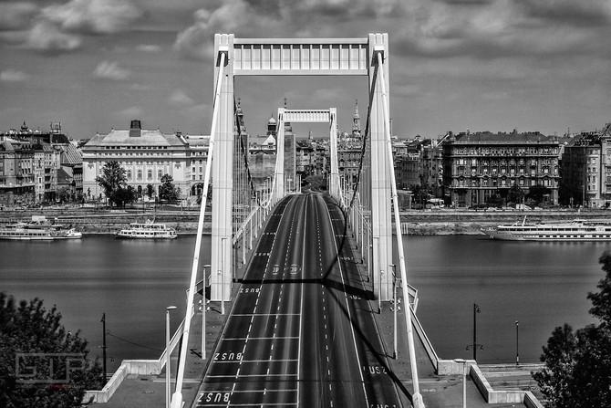 NOBODY NOWHERE Elisabeth Bridge