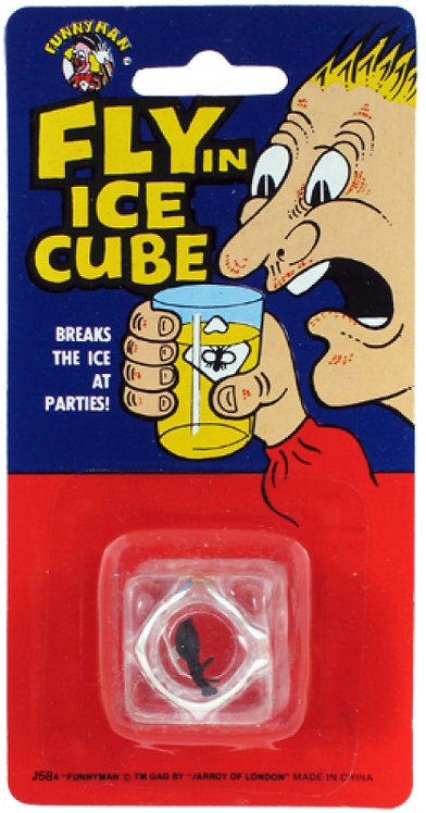 FLY IN ICE CUBE