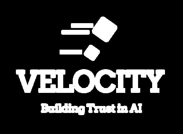 VELOCITY-logo-white (10).png