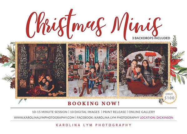 Christmas Minis Session2020.jpg