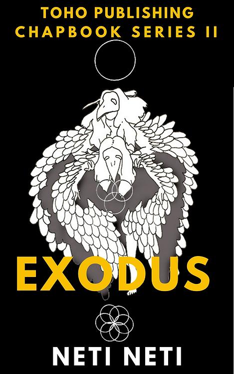Exodus: Neti Neti