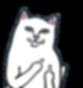 кот с факами рипндип ripndip кофта худи свитшот реплика дешево  скидки низкие цены