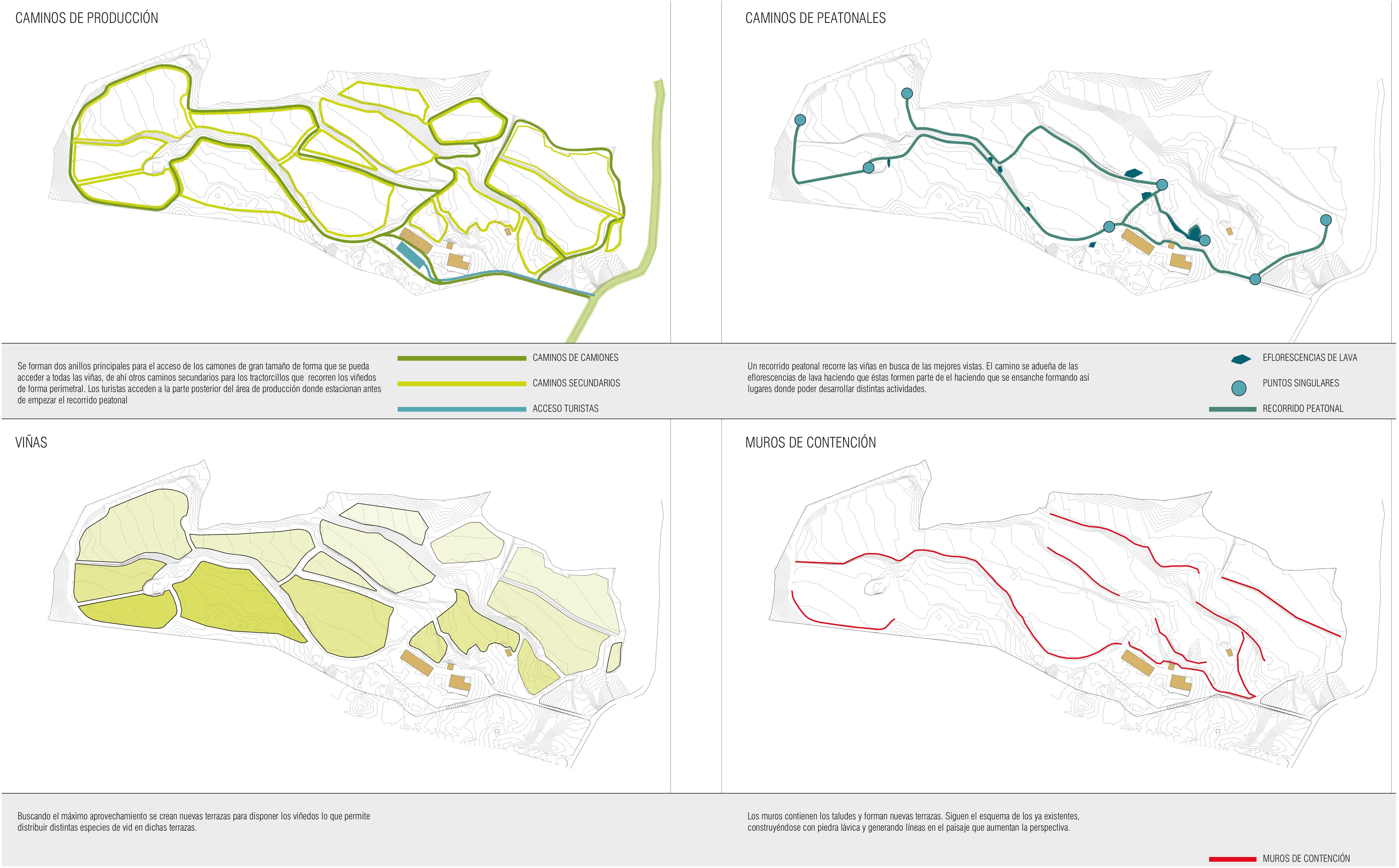 caminos_de_producción,_peatonales,_viñas,_muros_de_contencion