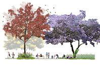 180607_Parque_Lineal_Sección_1.jpg