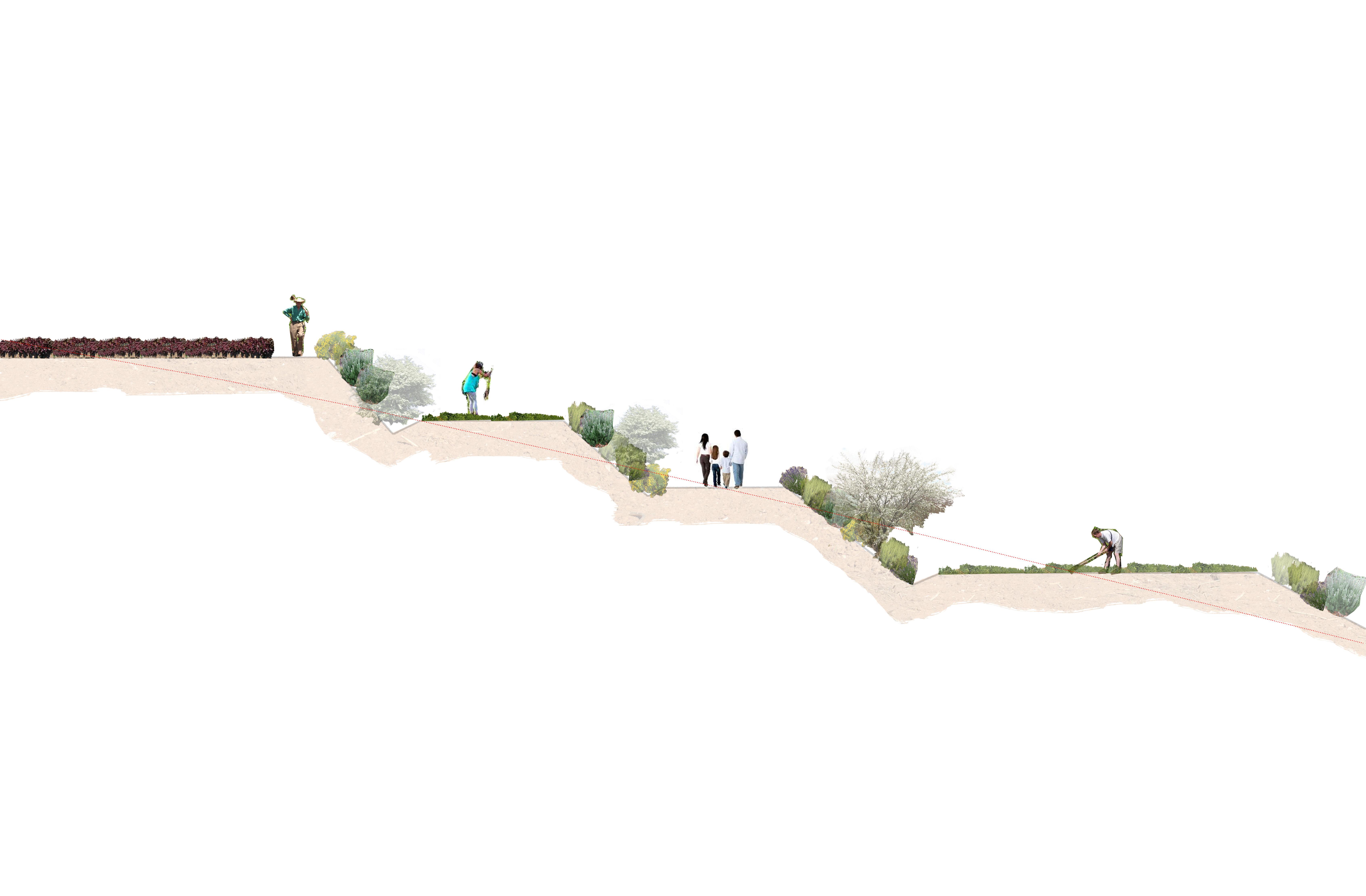 sección_para_evolución_de_veg_taludes_can_montllor