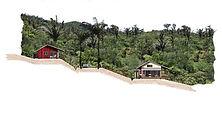 cabaña en la montaña panama laap arquitectura paisajismo