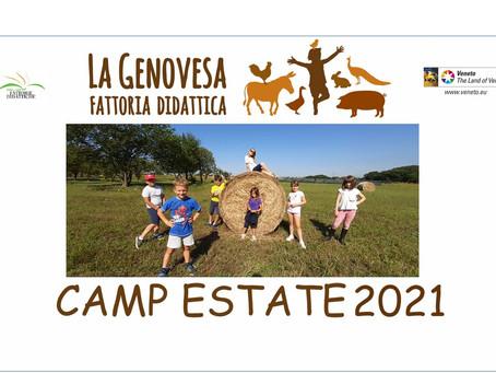 CAMP ESTIVI 2021