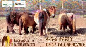 Camp di Carnevale