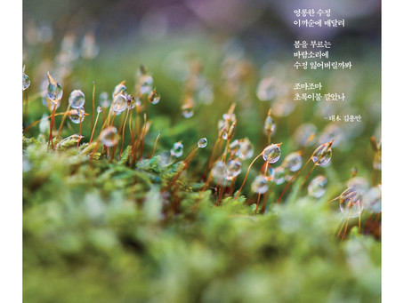 품마을신문 0013호 발행. 2018.03.16.