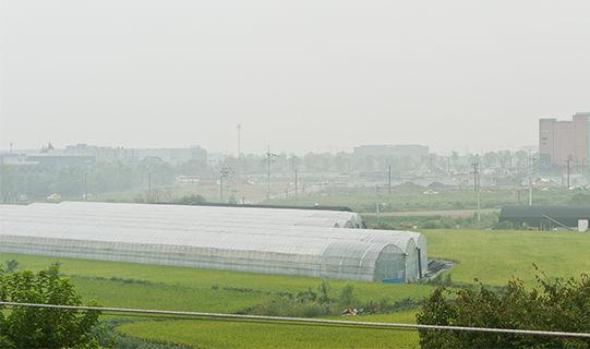 P-03-3.jpg