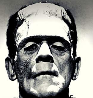 The Dynamic Between a Father & Son, and the Many Themes of Mary Shelly's Frankenstein