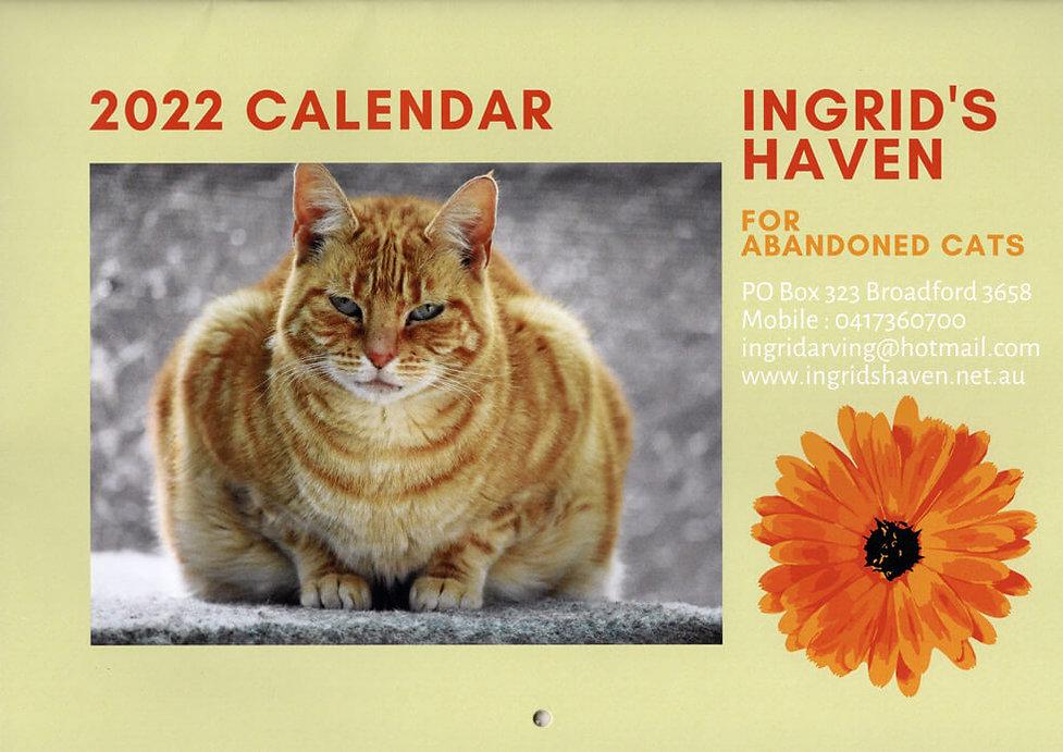 cat-shelter-2022-calendar.jpg