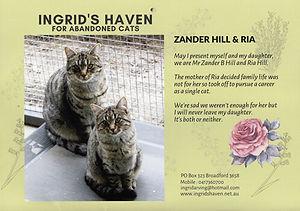 cat-shelter-2022-calendar2.jpg