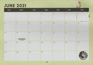 Inside page of calendar showing calendar grid