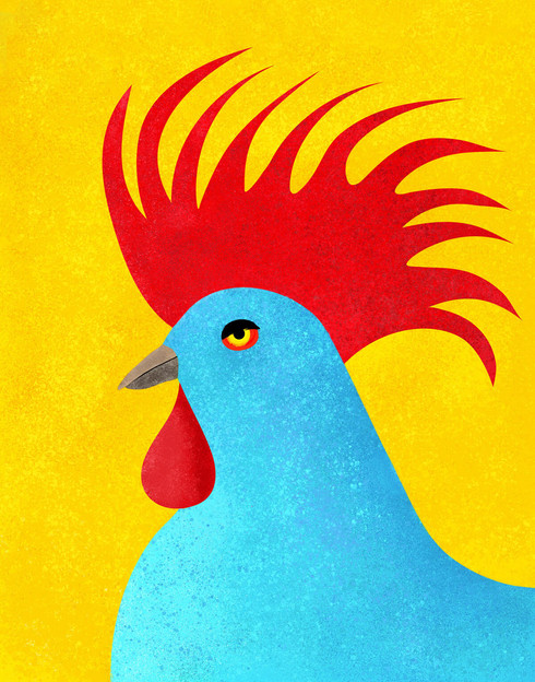 Whimsical illustration of a blue rooster with a large red comb