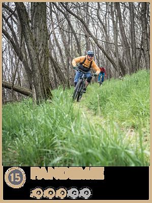 TrailsPictures_Pandemie.png