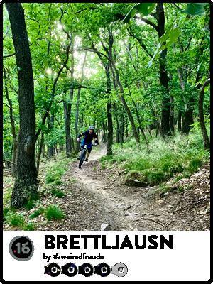 TrailsPictures_Brettljausn.png