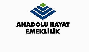 Anadolu Hayat Emeklilik Hakkındaki Tüm Tüketici Şikayetleri