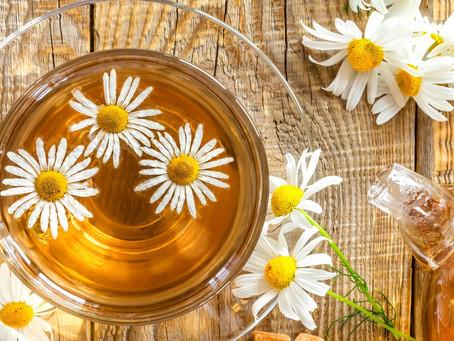 Papatya Çayı Nasıl Demlenmeli? Faydaları Nelerdir?