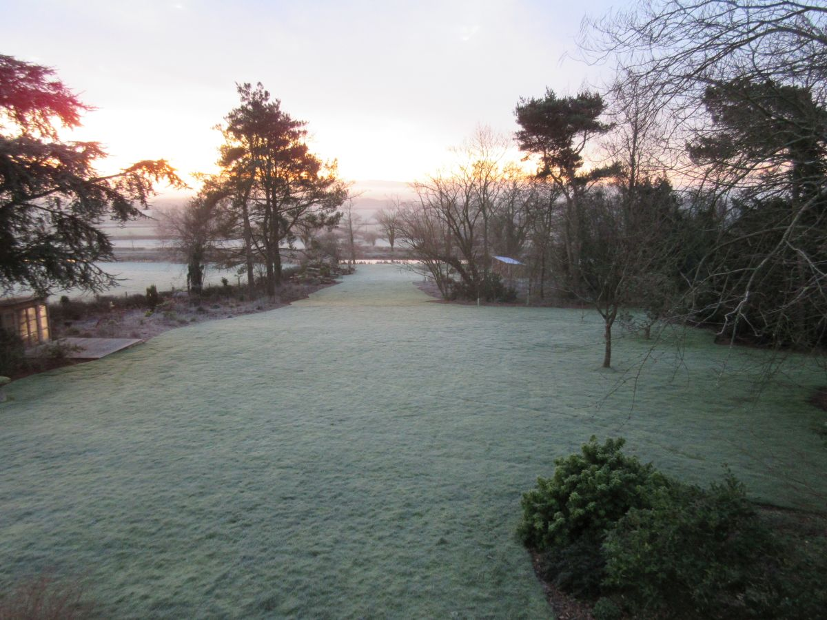 Icy morning