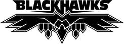 Blackhawks-logo.png