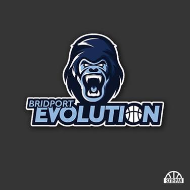 Bridport Evolution Logo