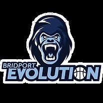 Logo_Evolution3_SQ.png