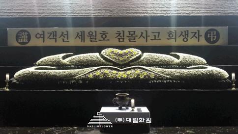 새월호-광주광역시청.png