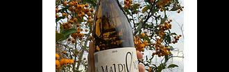 La Maldicion Malvar
