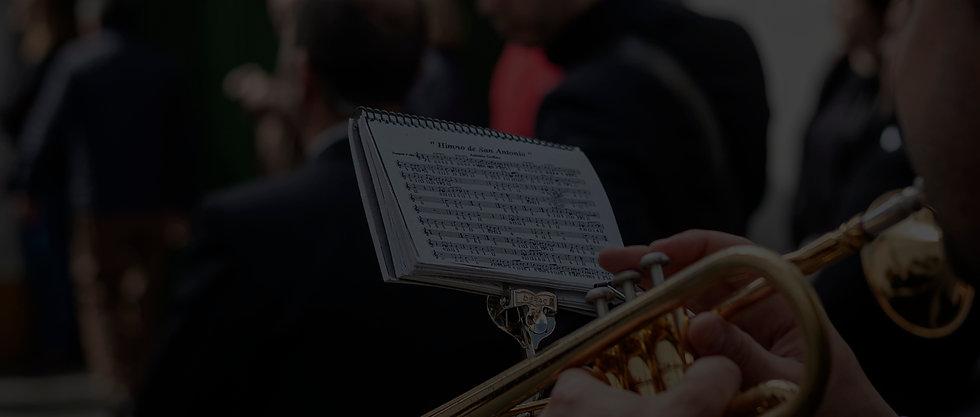Inicio_de_Sección(Polillas).jpg