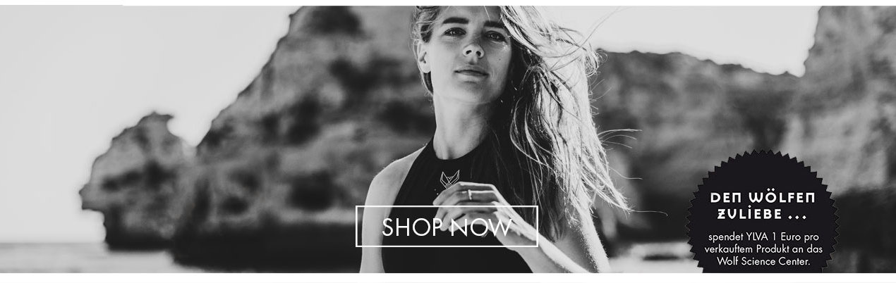 Bilder_Titel_ShopNow1.jpg