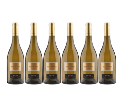 6 bottiglie - Montecarlo Bianco 2019 - Tenuta del Buonamico