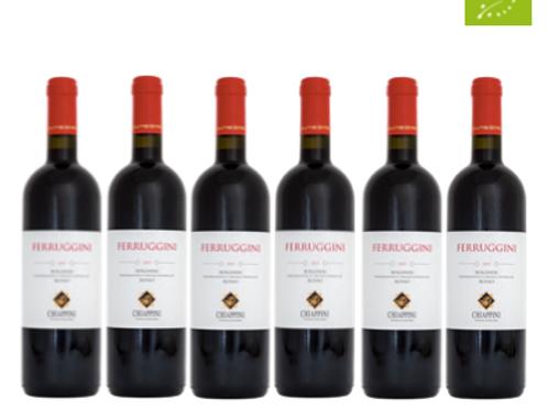 6 bottiglie - Bolgheri Rosso FERRUGGINI 2019 - Chiappini