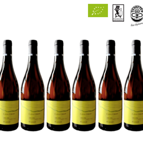 6 bottiglie - Toscana Bianco 2019 - Podere Concori