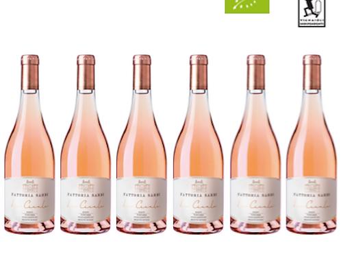6 bottiglie - Toscana Rosato LE CICALE 2018 - Fattoria Sardi