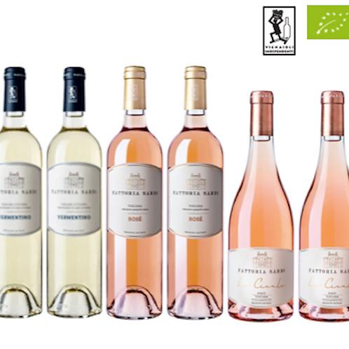 "6 bottiglie - Cassa mista Fattoria Sardi:""LE COLLINE LUCCHESI"""