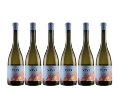 6 bottiglie - Toscana Vermentino VIVI 2019 - Tenuta del Buonamico