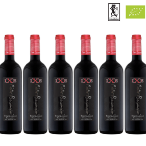 6 bottiglie - Toscana Tempranillo IXE 2016 - Pietro Beconcini