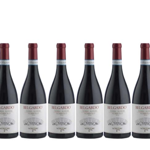 6 bottiglie - Terre Alfieri Nebbiolo BELGARDO 2016 - Cascina Vengore